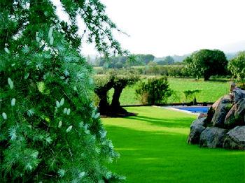 Foto 12 de Jardines (diseño y mantenimiento) en Sant Antoni De Vilamajor | Jardineria Costa