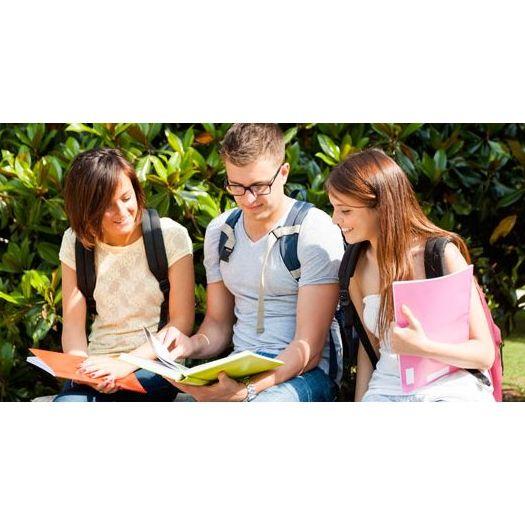 Universidad : Apoyo y formación   de Academia Format