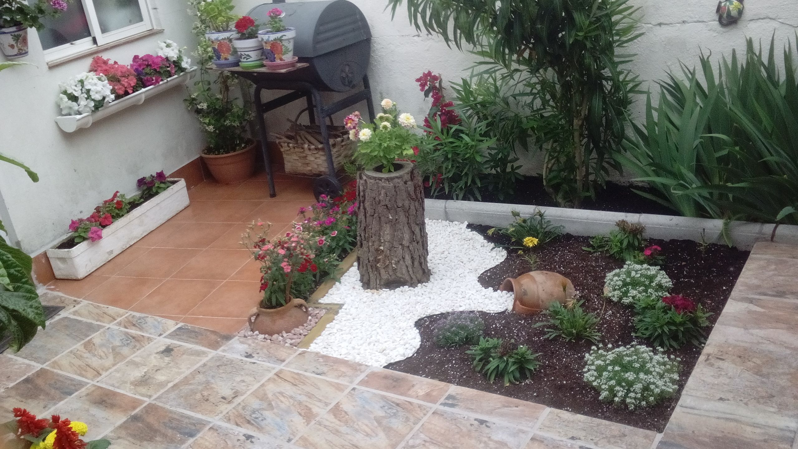 Jardinería: Servicios de CEDIEP Construcciones y Reformas