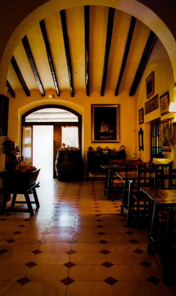 Foto 3 de Cocina catalana en  | El Celler D'Aiguaviva
