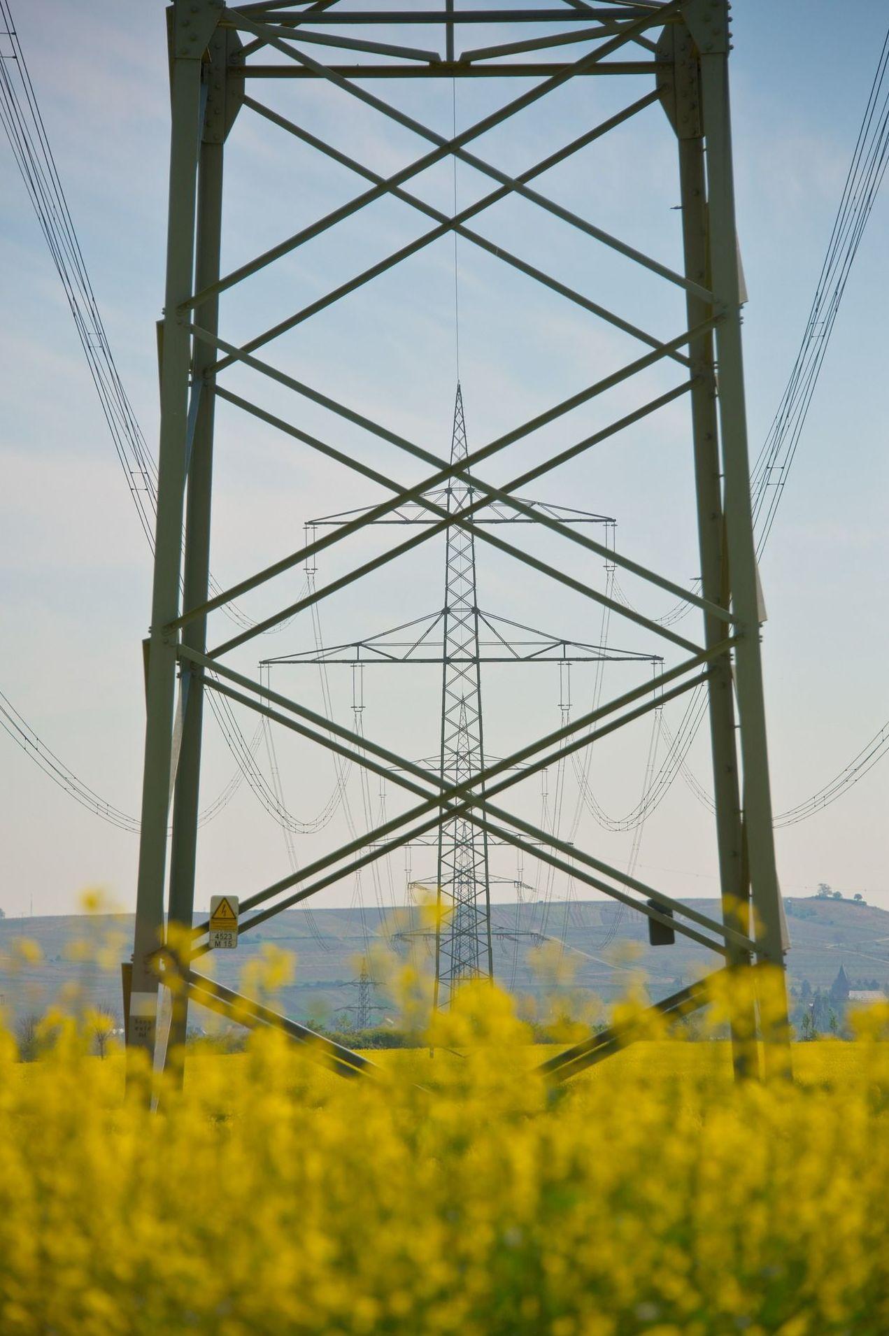 Comercializadora de energía al mejor precio