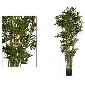 Árbol bambú 1,50m