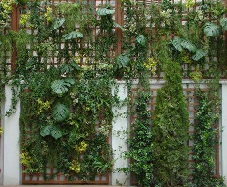 Jardín vertical para exterior de edificio