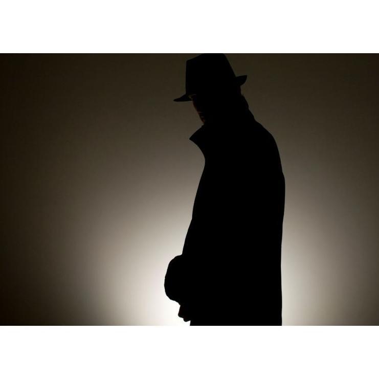 Servicios : Servicios  de Agencia de detectives Atalaya