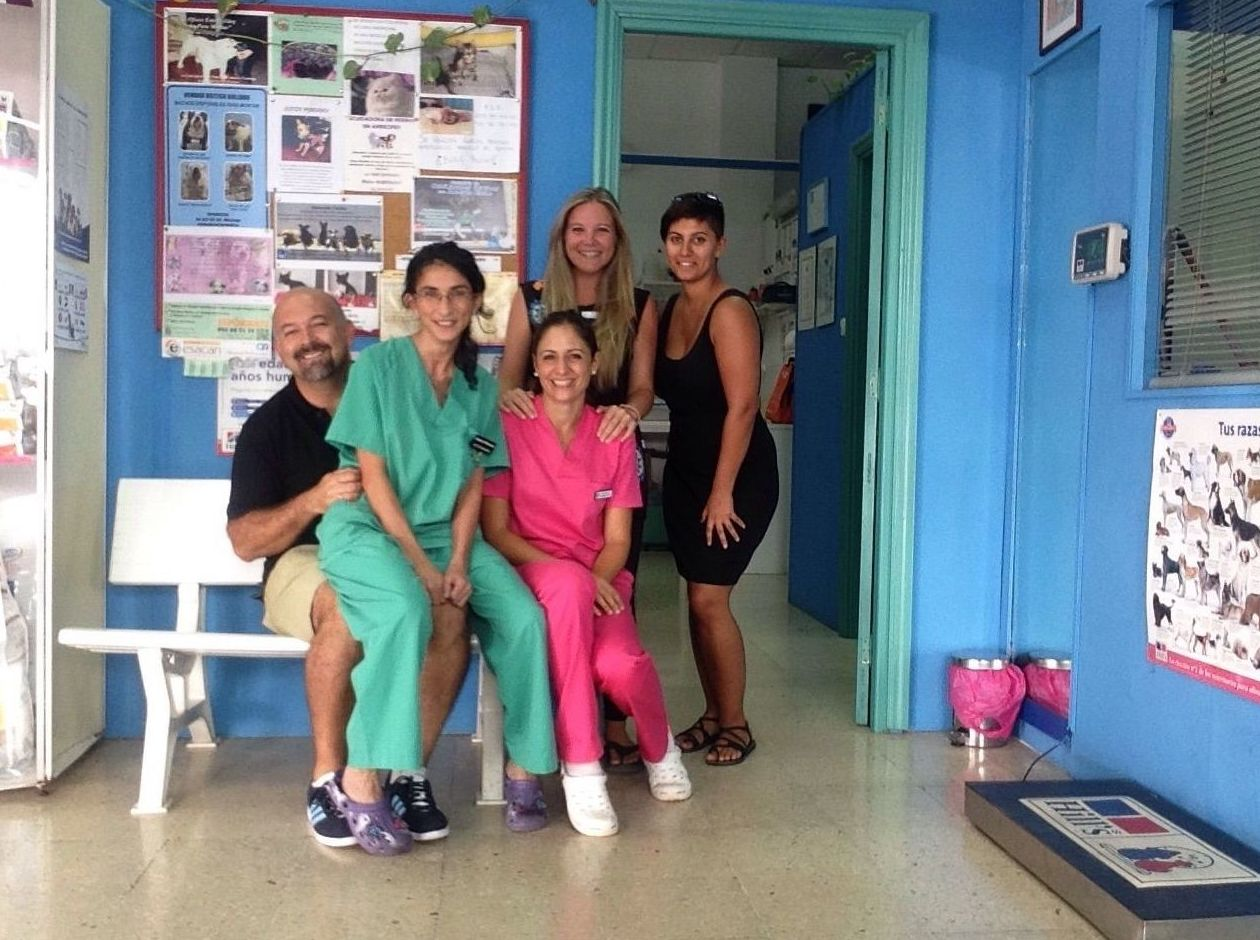 Foto 12 de Veterinarios en Arrecife | Clínica Veterinaria Jameos