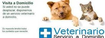 Visitas a domicilio: Productos y servicios de Clínica Veterinaria Jameos