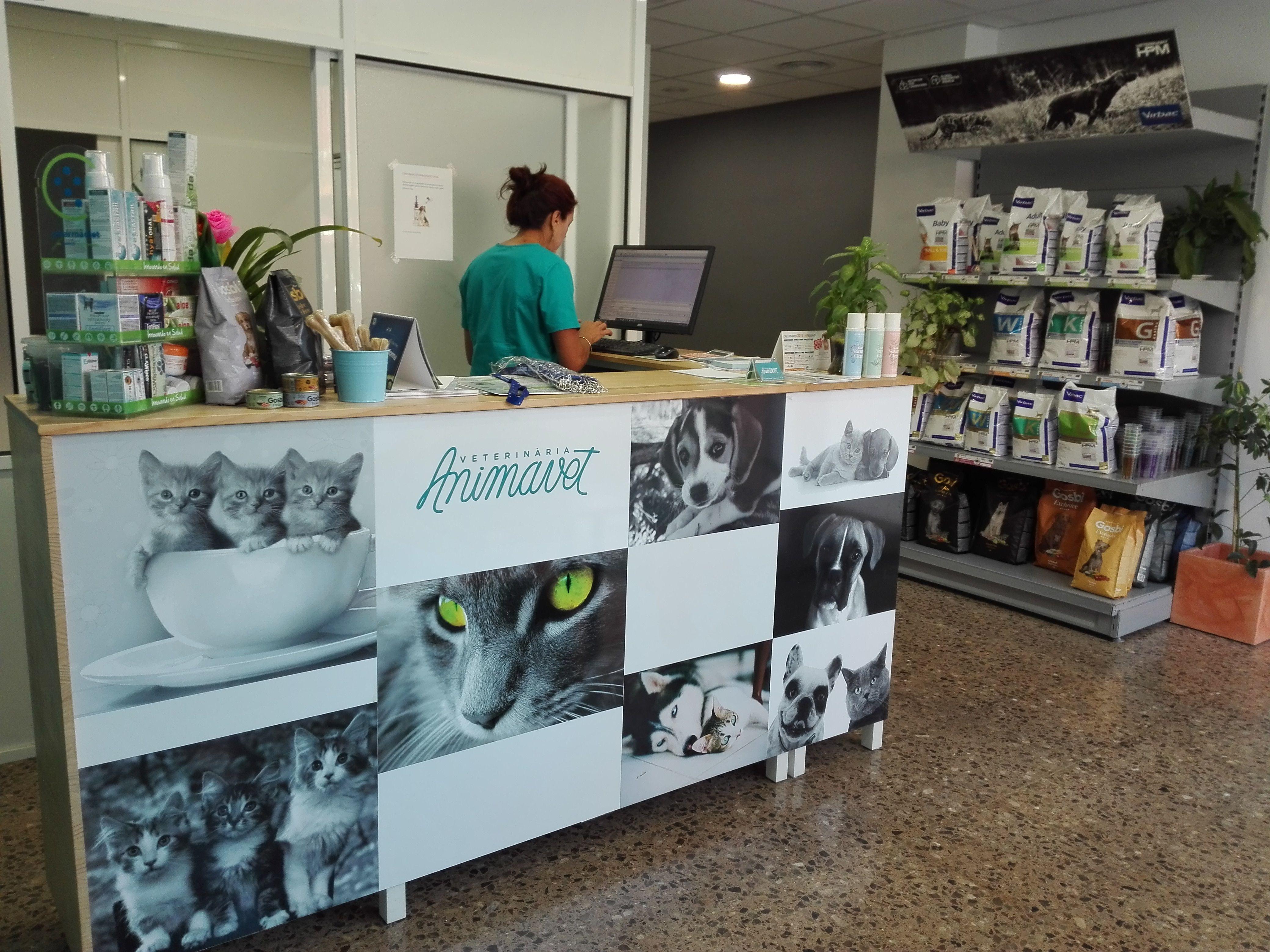 Foto 3 de Veterinarios en Sant Sadurní d'Anoia | Veterinaria Animavet