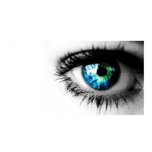 Óptico Optometrista: Servicios de Óptica Montoreña