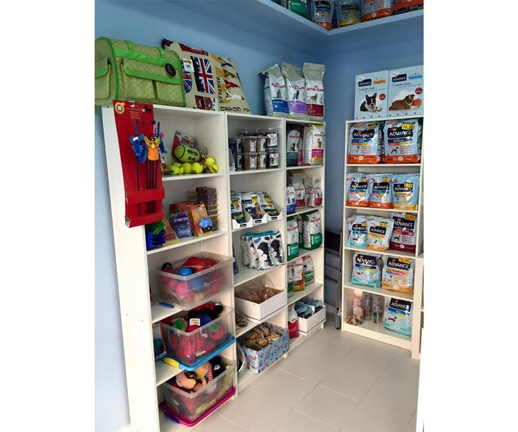 Boutique canina en Madrid