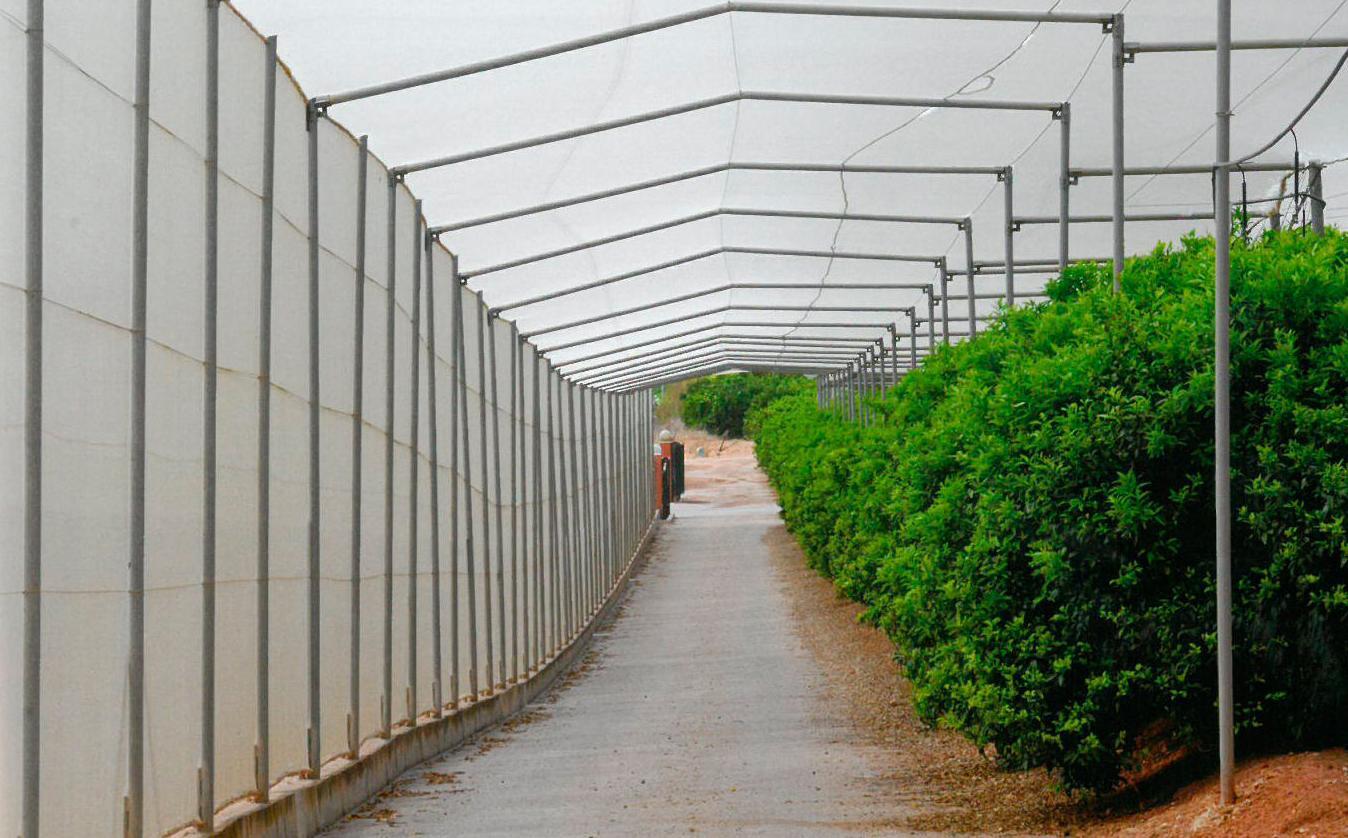 Túneles para caminos