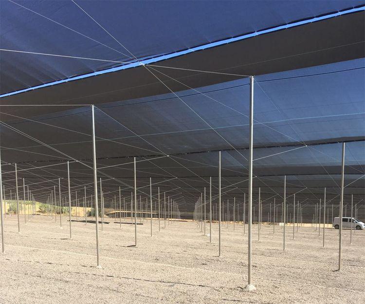 Empresa especializada en invernaderos en Valencia