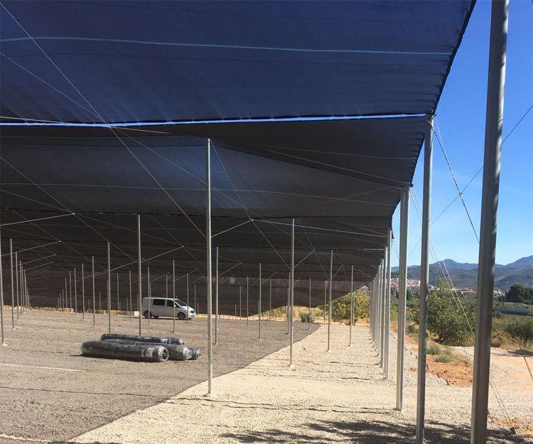 Cubiertas para invernaderos en Valencia