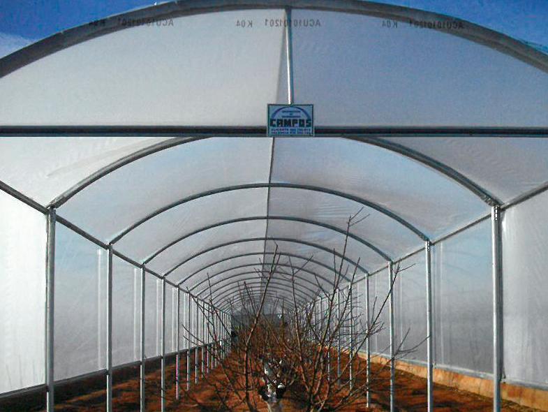 Invernaderos tipo túnel