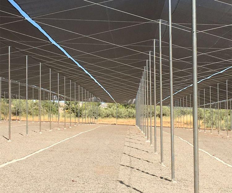Empresa de invernaderos en Valencia