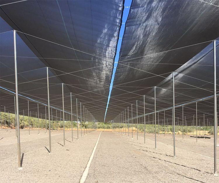 Empresa de construcción de invernaderos en Valencia