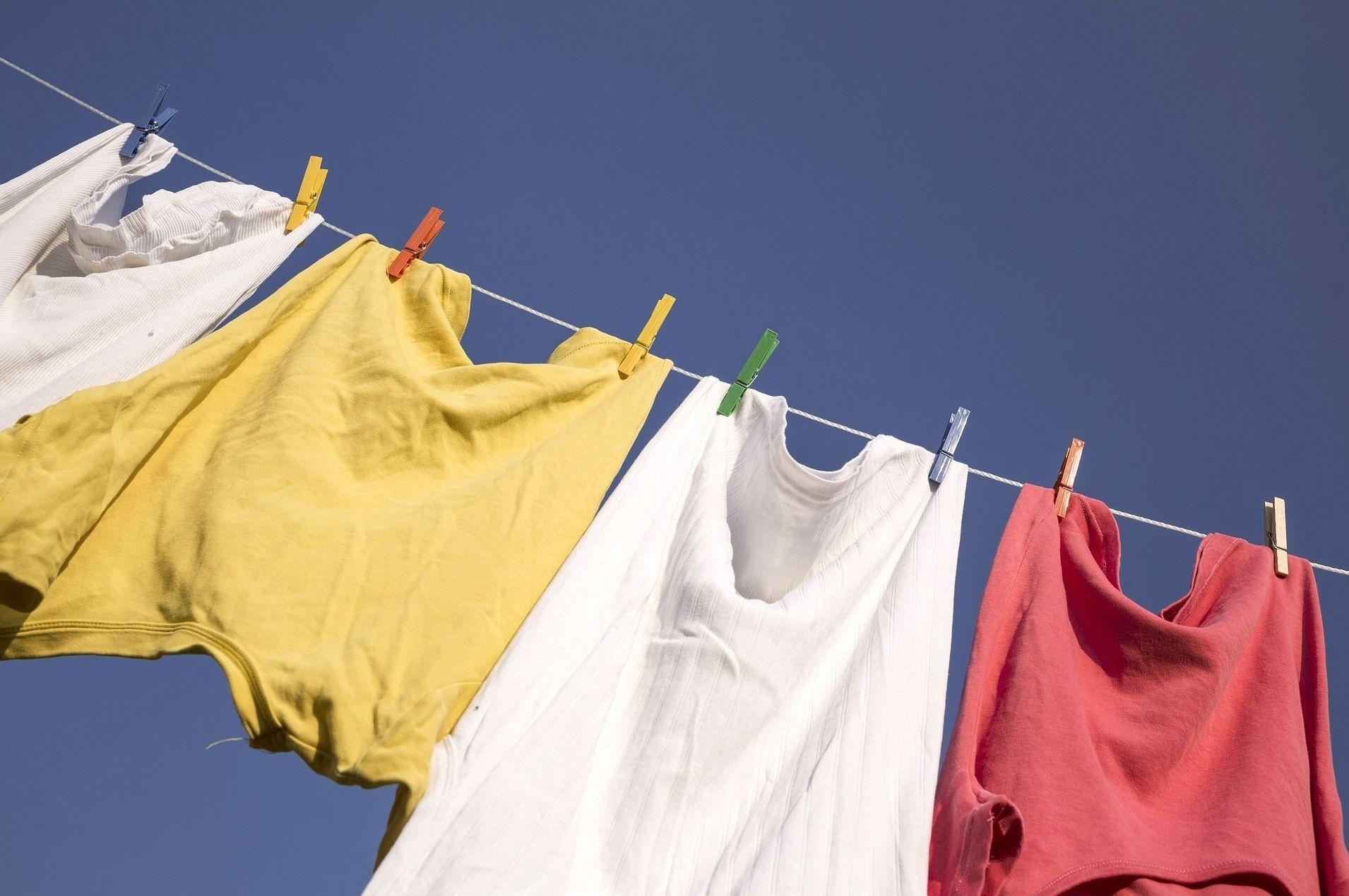 Lavandería y planchado: Nuestro centro de Novoger