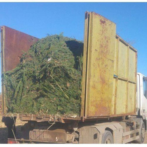 Gestión de residuos: Servicios de Ecopoda