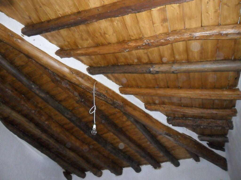Foto 1 de Exterminación carcoma en Zuera | Garbi Aragón