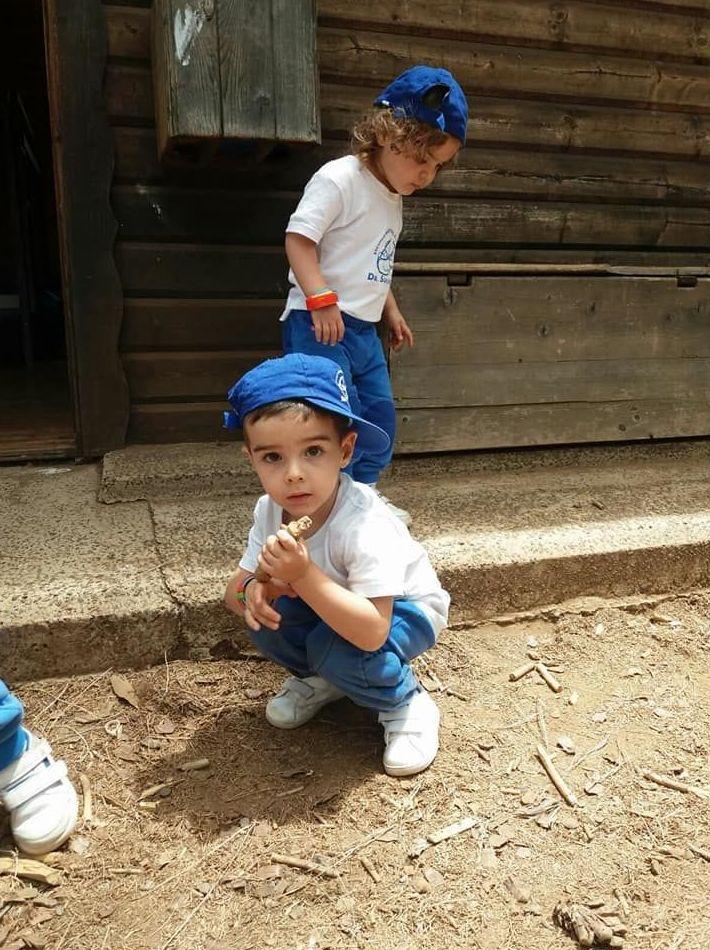 Foto 170 de Guarderías y Escuelas infantiles en Las Palmas de Gran Canaria | Escuela Maternal Infantil Dr.Sánchez