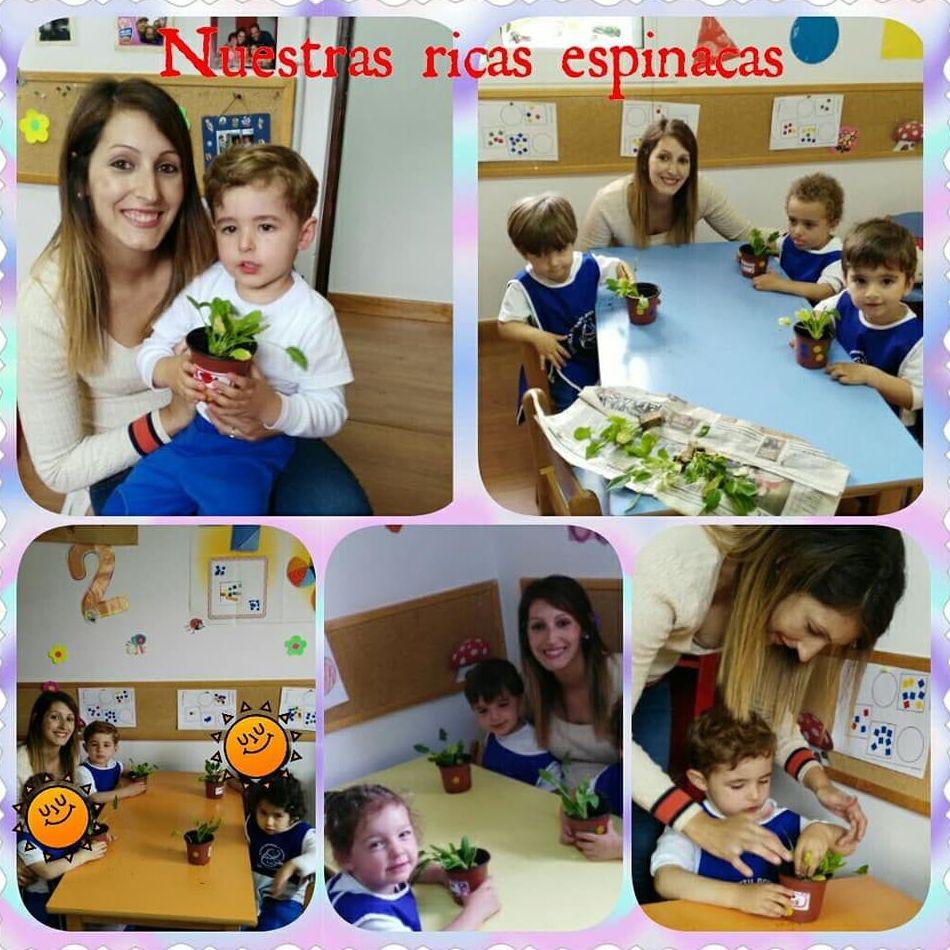 Foto 222 de Guarderías y Escuelas infantiles en Las Palmas de Gran Canaria | Escuela Maternal Infantil Dr.Sánchez