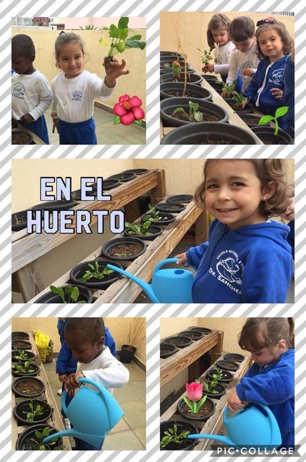 Foto 226 de Guarderías y Escuelas infantiles en Las Palmas de Gran Canaria | Escuela Maternal Infantil Dr.Sánchez
