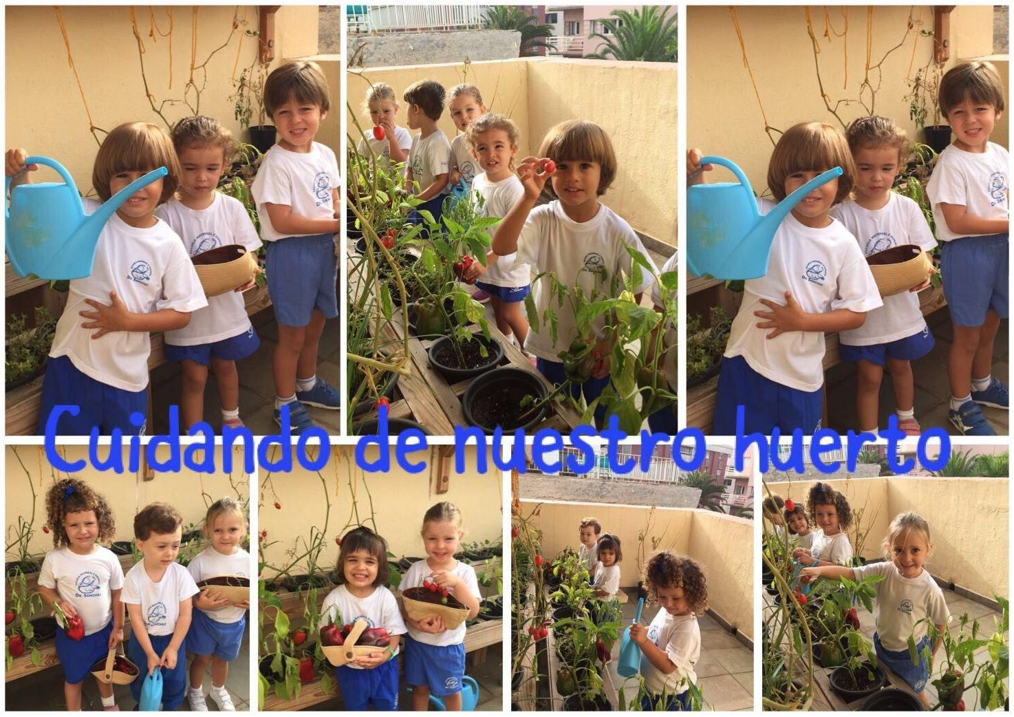Foto 189 de Guarderías y Escuelas infantiles en Las Palmas de Gran Canaria | Escuela Maternal Infantil Dr.Sánchez