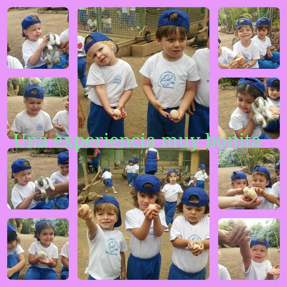 Foto 166 de Guarderías y Escuelas infantiles en Las Palmas de Gran Canaria | Escuela Maternal Infantil Dr.Sánchez