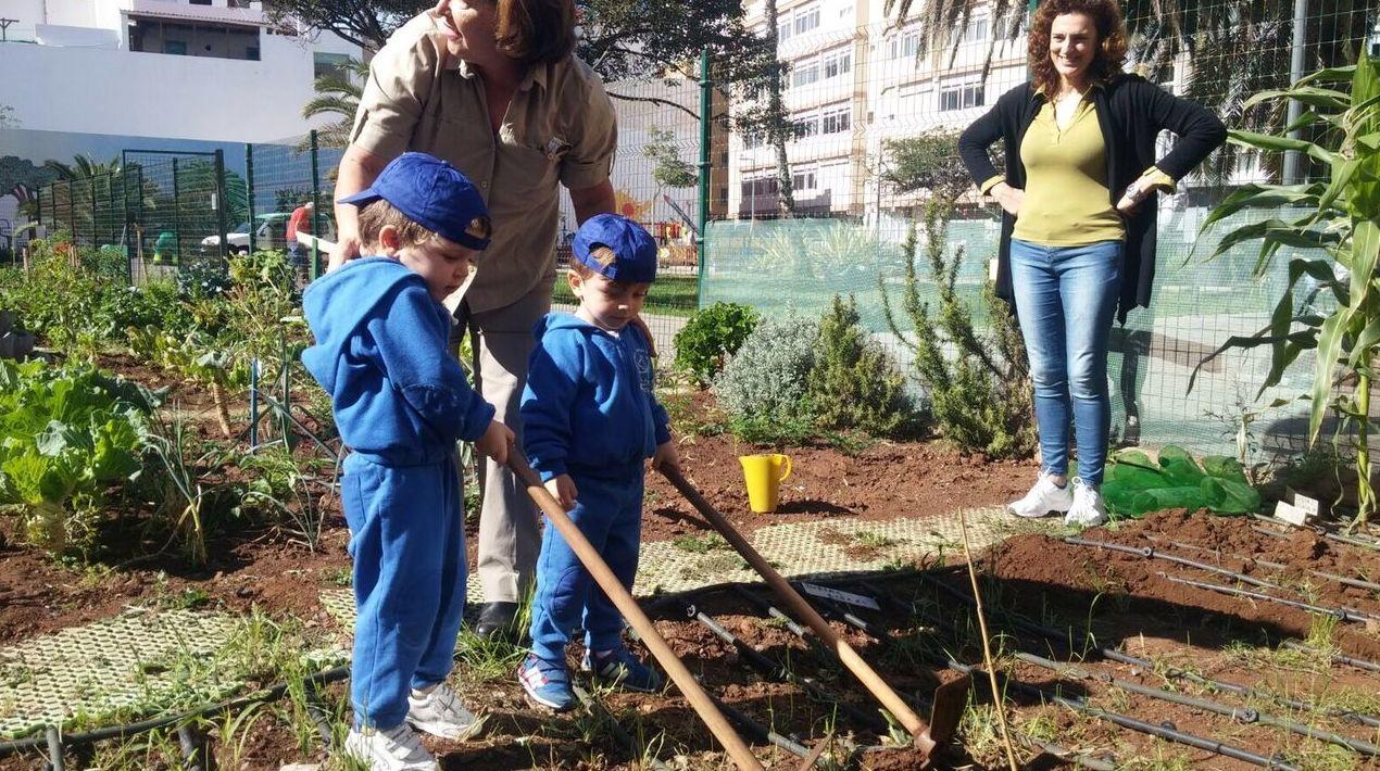 Foto 148 de Guarderías y Escuelas infantiles en Las Palmas de Gran Canaria | Escuela Maternal Infantil Dr.Sánchez