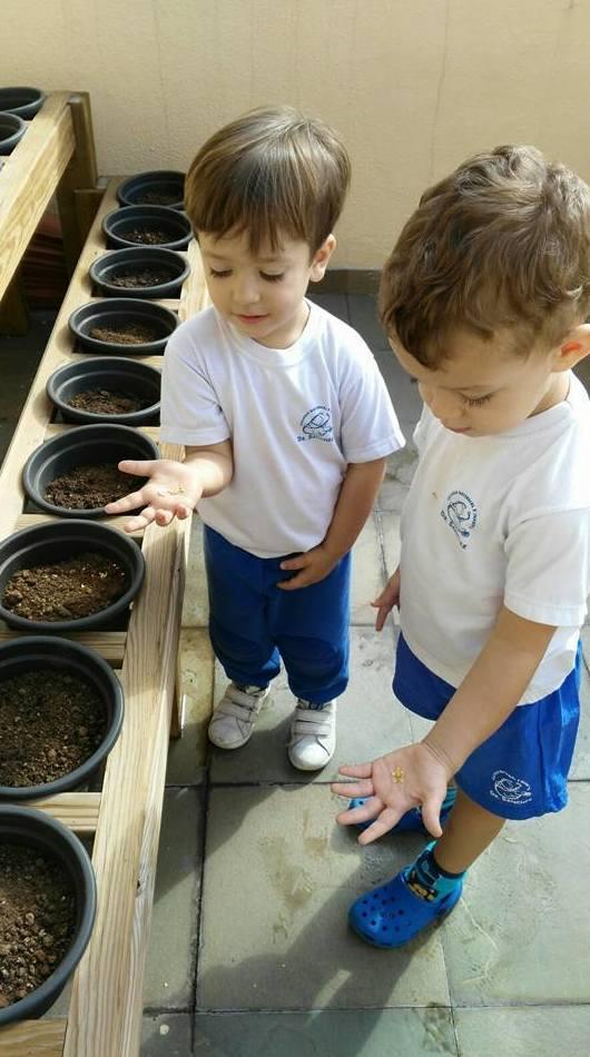 Plantando semillas en nuestro huertito!