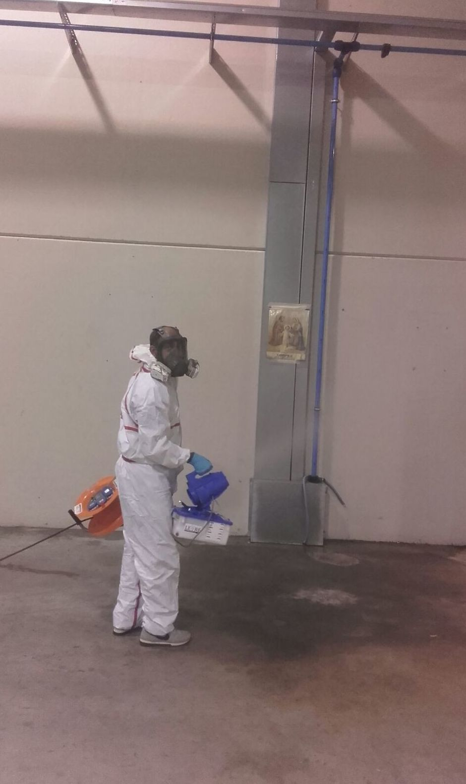 Pest Control y control de plagas: Catálogo de Leyre Superlimpiezas