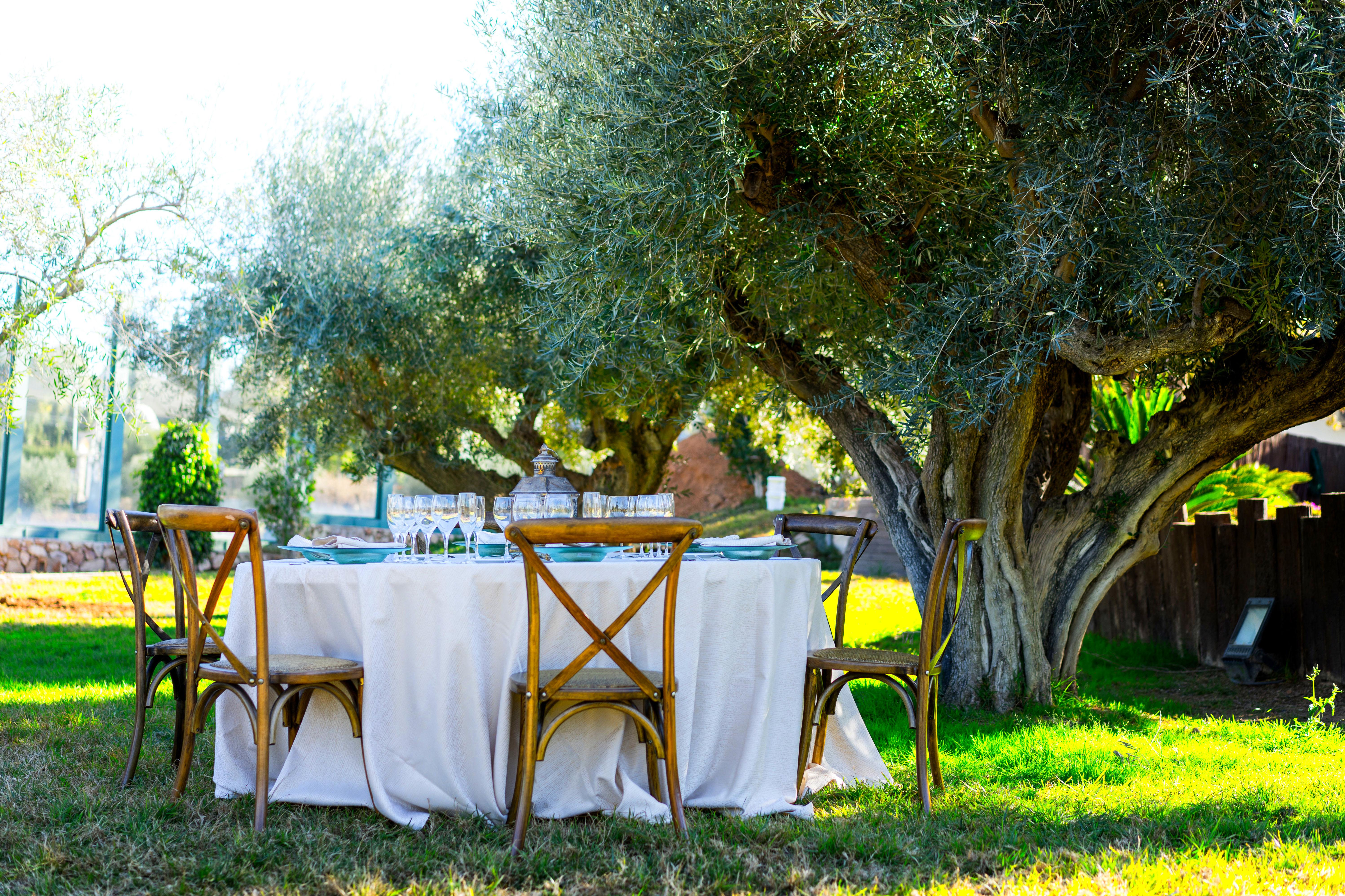 Foto 20 de Alquiler de sillas, mesas y menaje en El Palmar | Mantelería & Menaje