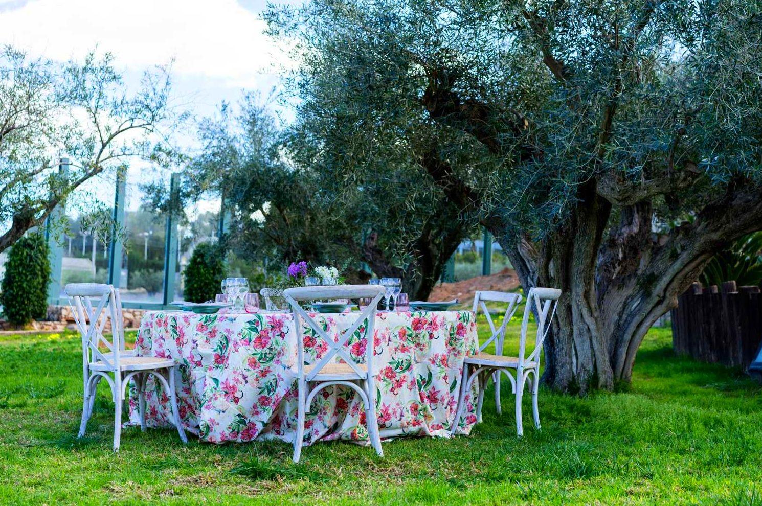 Foto 16 de Alquiler de sillas, mesas y menaje en El Palmar | Mantelería & Menaje