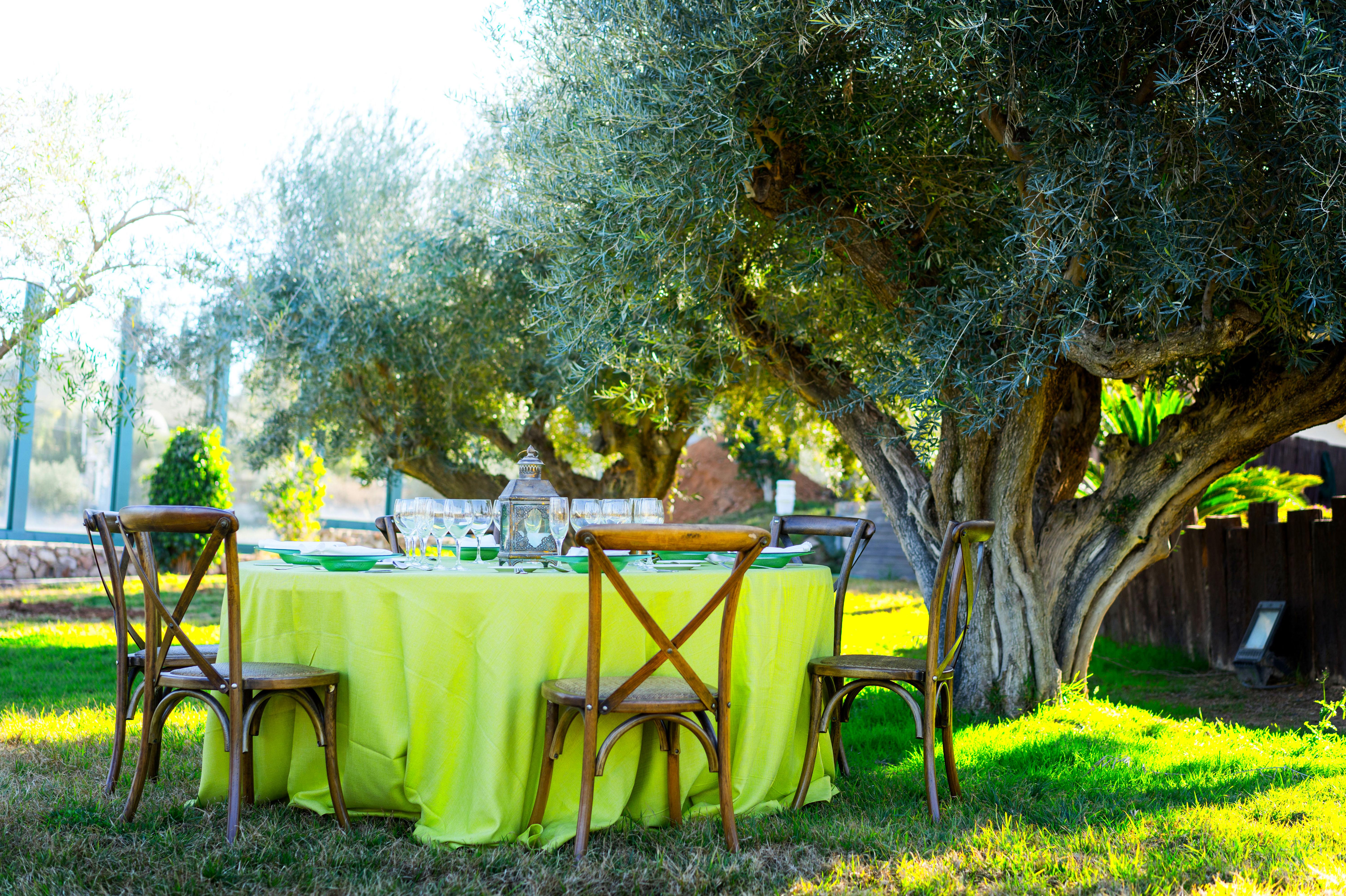 Foto 69 de Alquiler de sillas, mesas y menaje en  | Mantelería & Menaje
