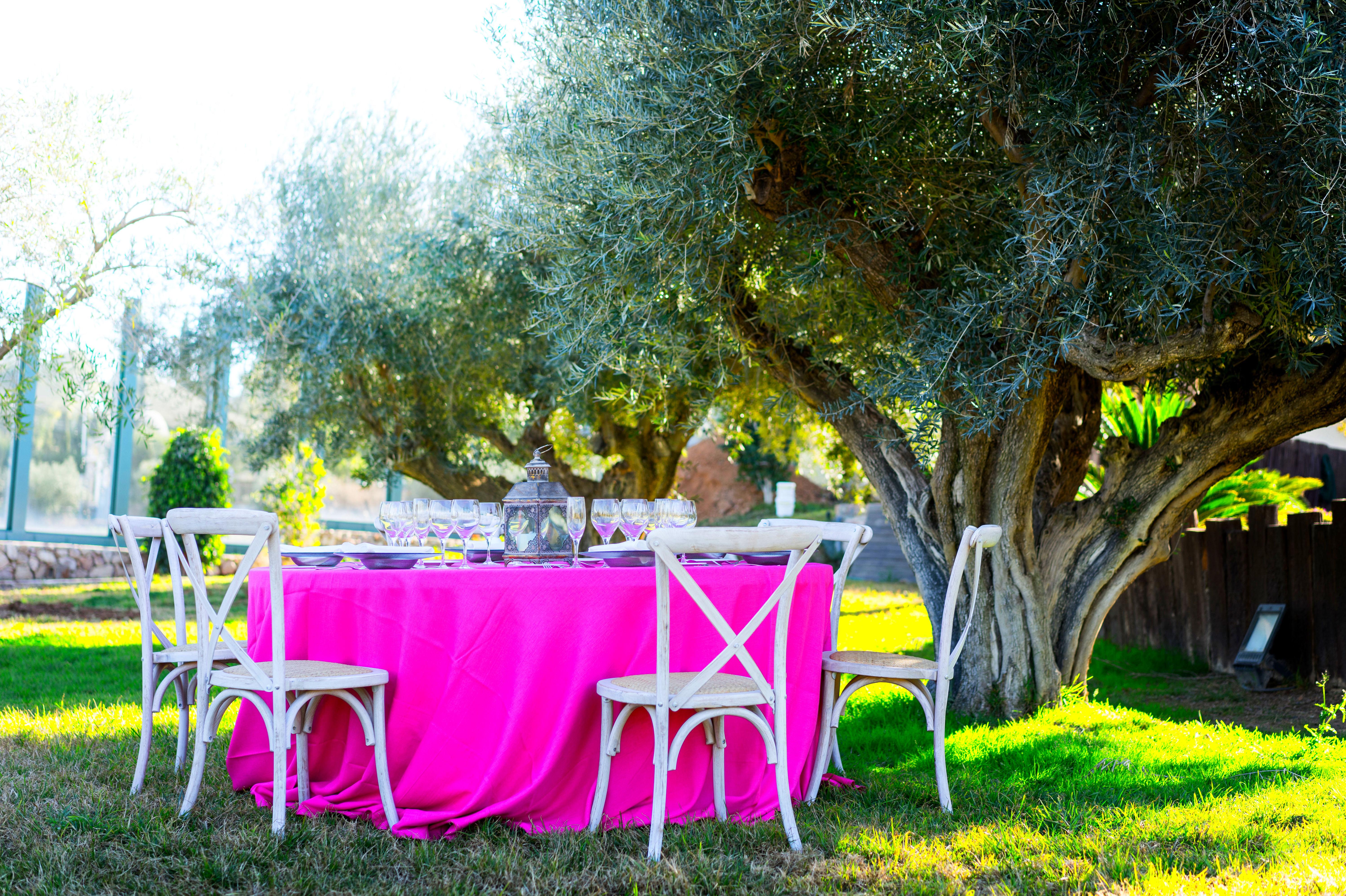 Foto 22 de Alquiler de sillas, mesas y menaje en El Palmar | Mantelería & Menaje