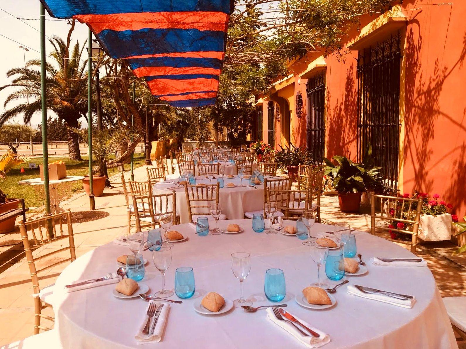 Foto 12 de Alquiler de sillas, mesas y menaje en El Palmar | Mantelería & Menaje