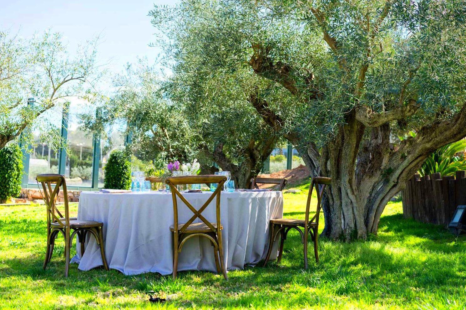Foto 66 de Alquiler de sillas, mesas y menaje en  | Mantelería & Menaje