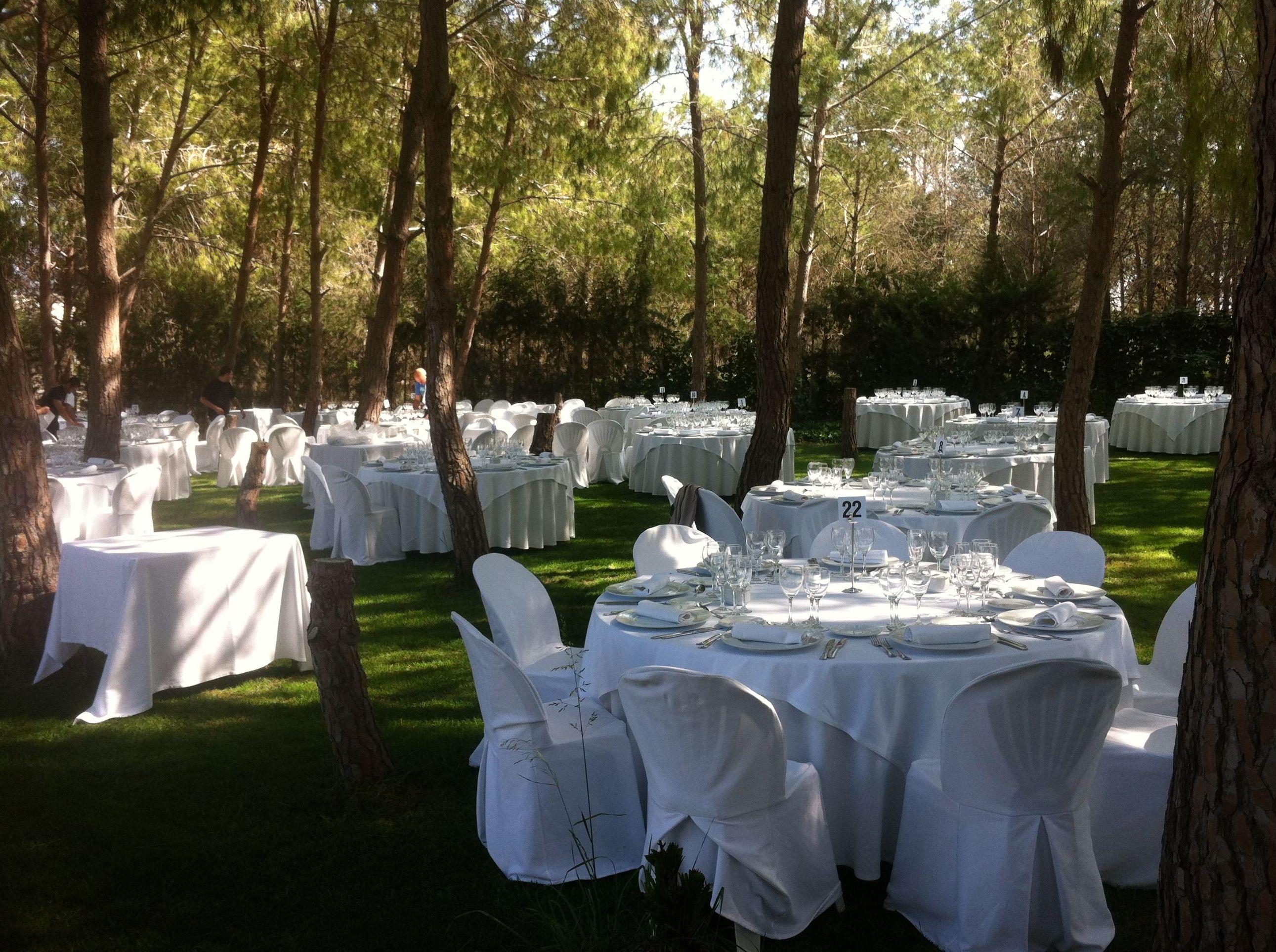 Decoración de espacios al aire libre para eventos