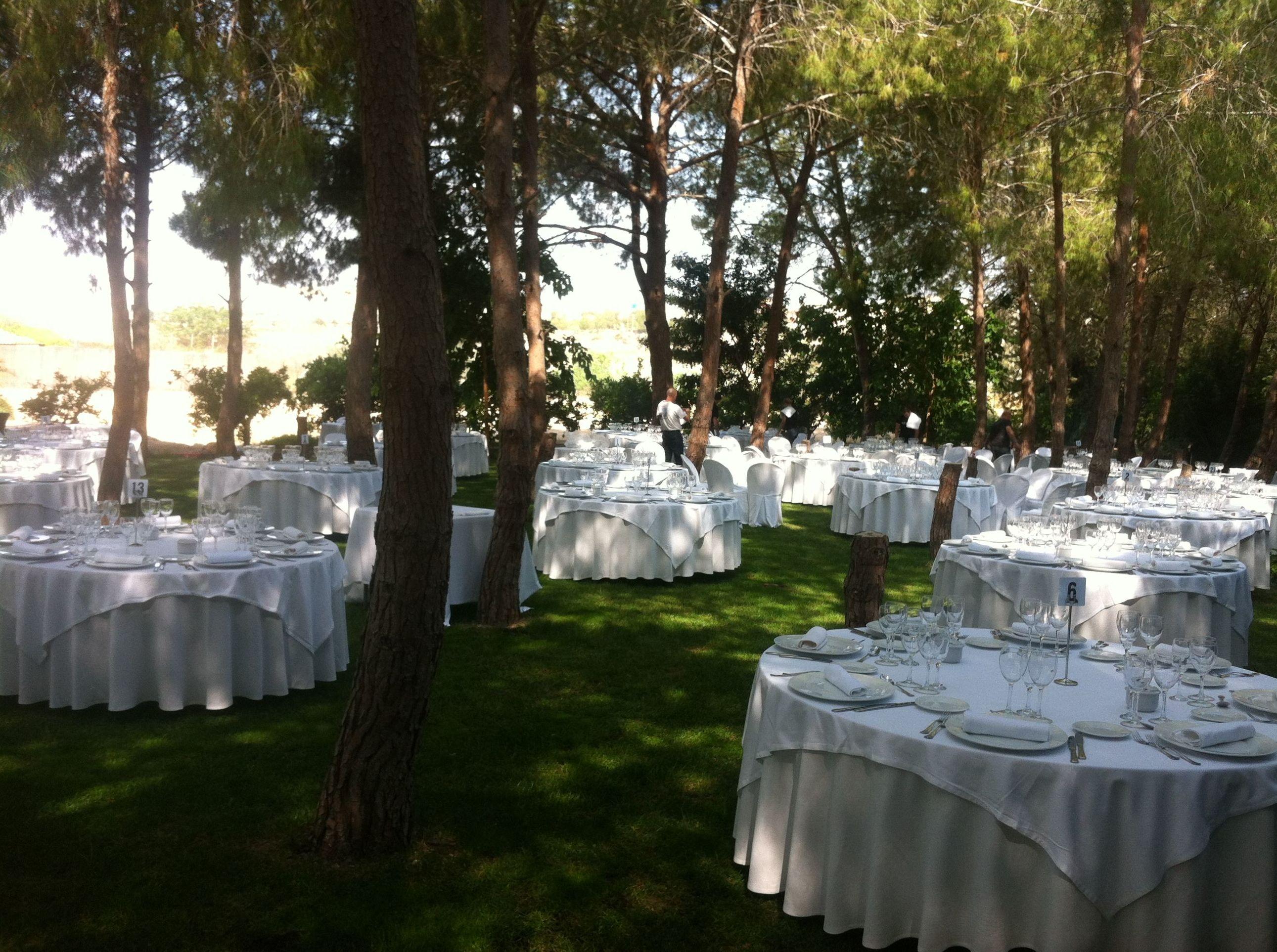 Organización de eventos en Murcia