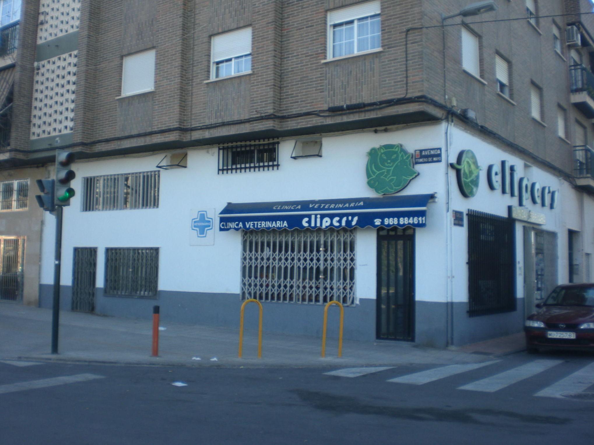Foto 10 de Veterinarios en El Palmar | Cliper's Clínica Veterinaria
