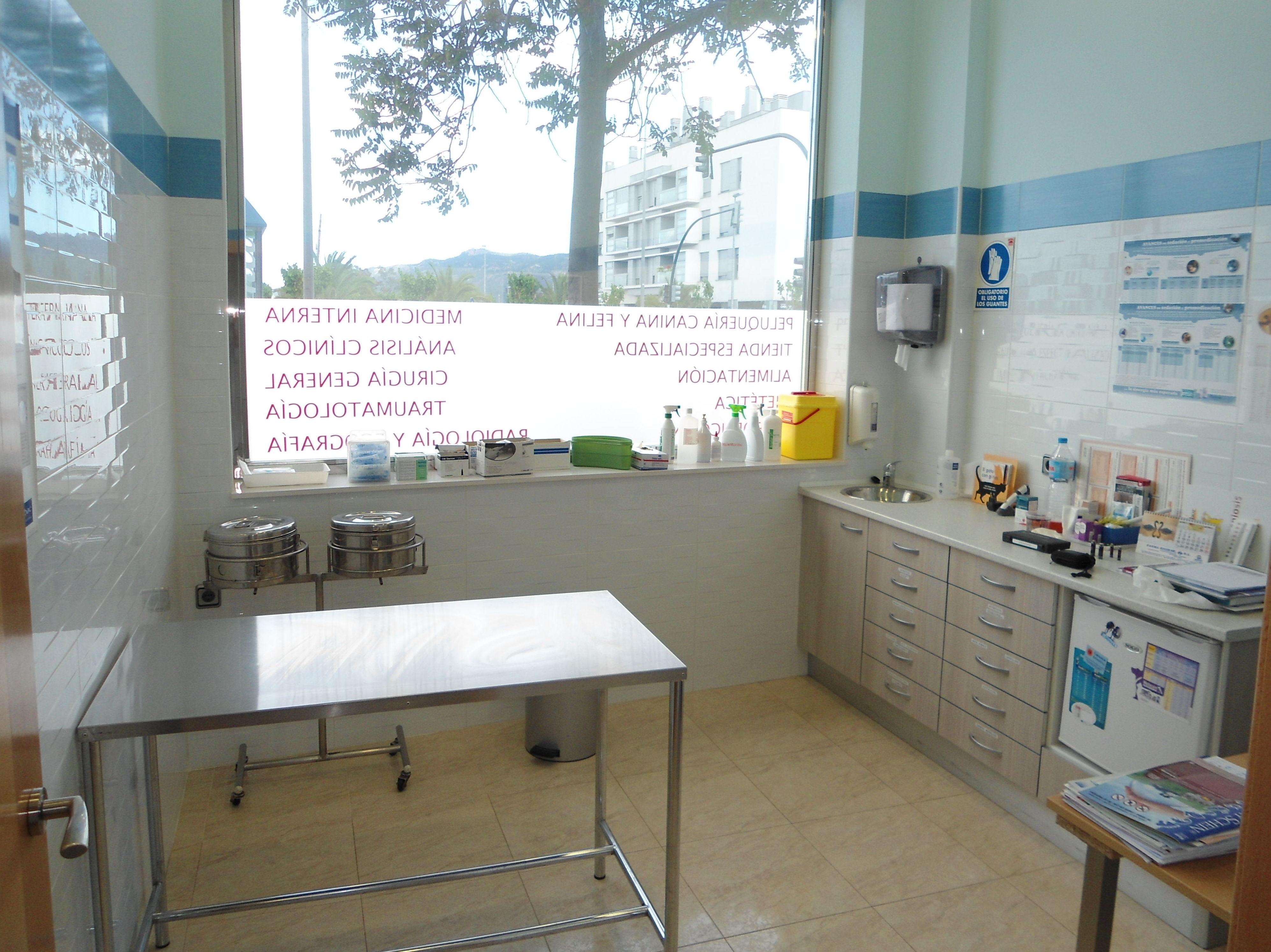 Foto 7 de Veterinarios en El Palmar | Cliper's Clínica Veterinaria