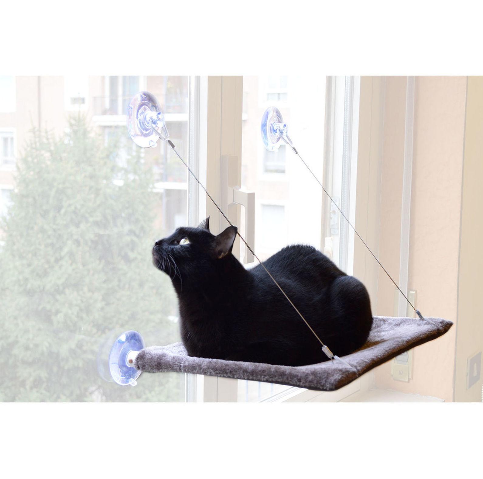 Hamaca de ventana para gatos comprar en Madrid
