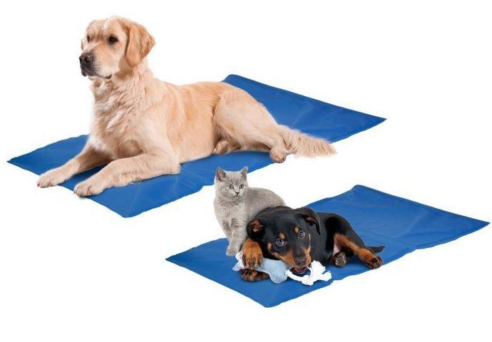 Camas refrescantes para mascotas