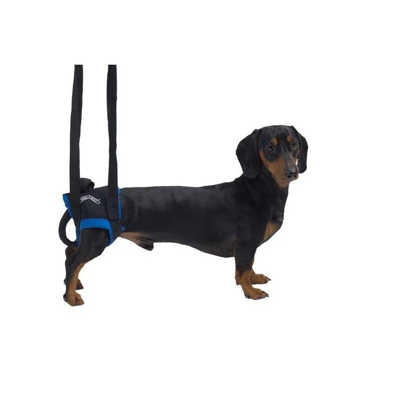Arnés Walkabout de elevación de patas traseras Krusse perros