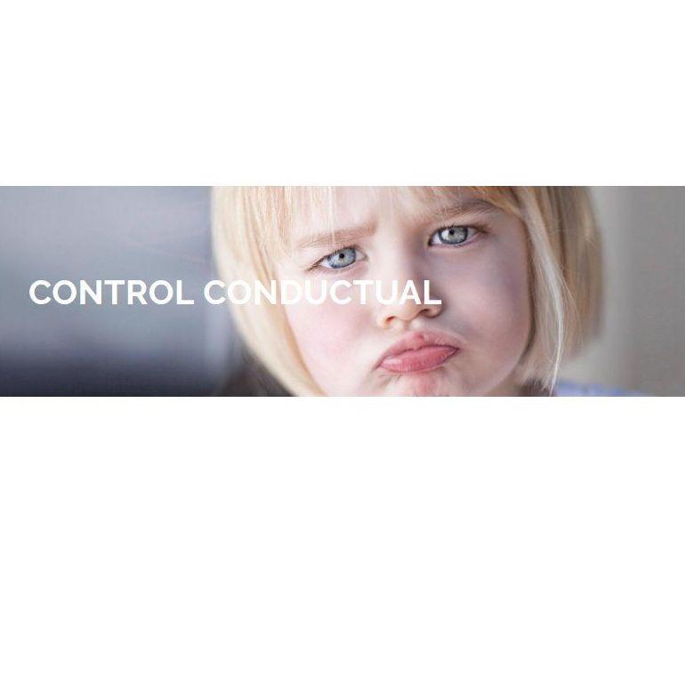 Control conductual: Especialidades de Logopedia y Psicopedagogía Avalops