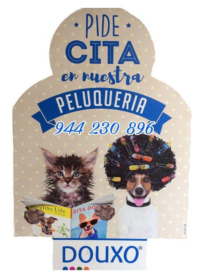 Peluquería canina: Productos de Centro Veterinario Mazarredo