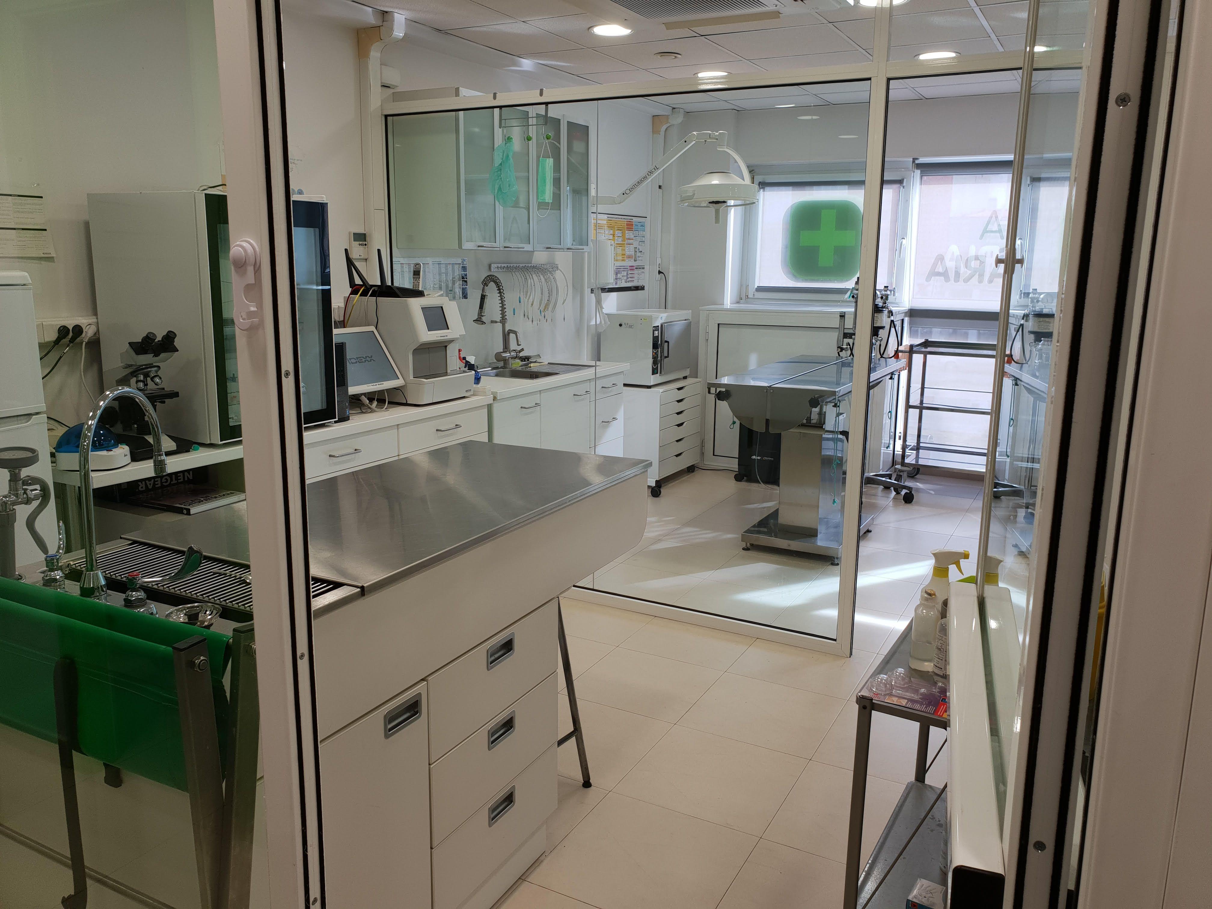Centro veterinario Pineda de Mar