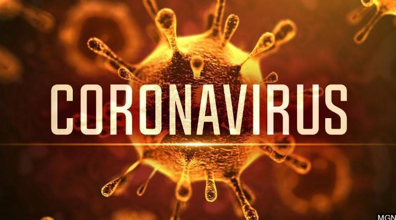 Desinfección Coronavirus  COVID 19: CATÁLOGO de CONTROL DE PLAGAS BIOCHEMICAL