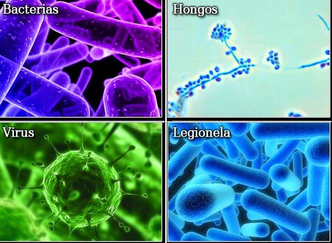 Desinfección: CATÁLOGO de Biochemical