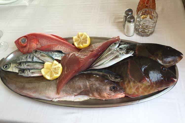 Especialistas en pescados variados