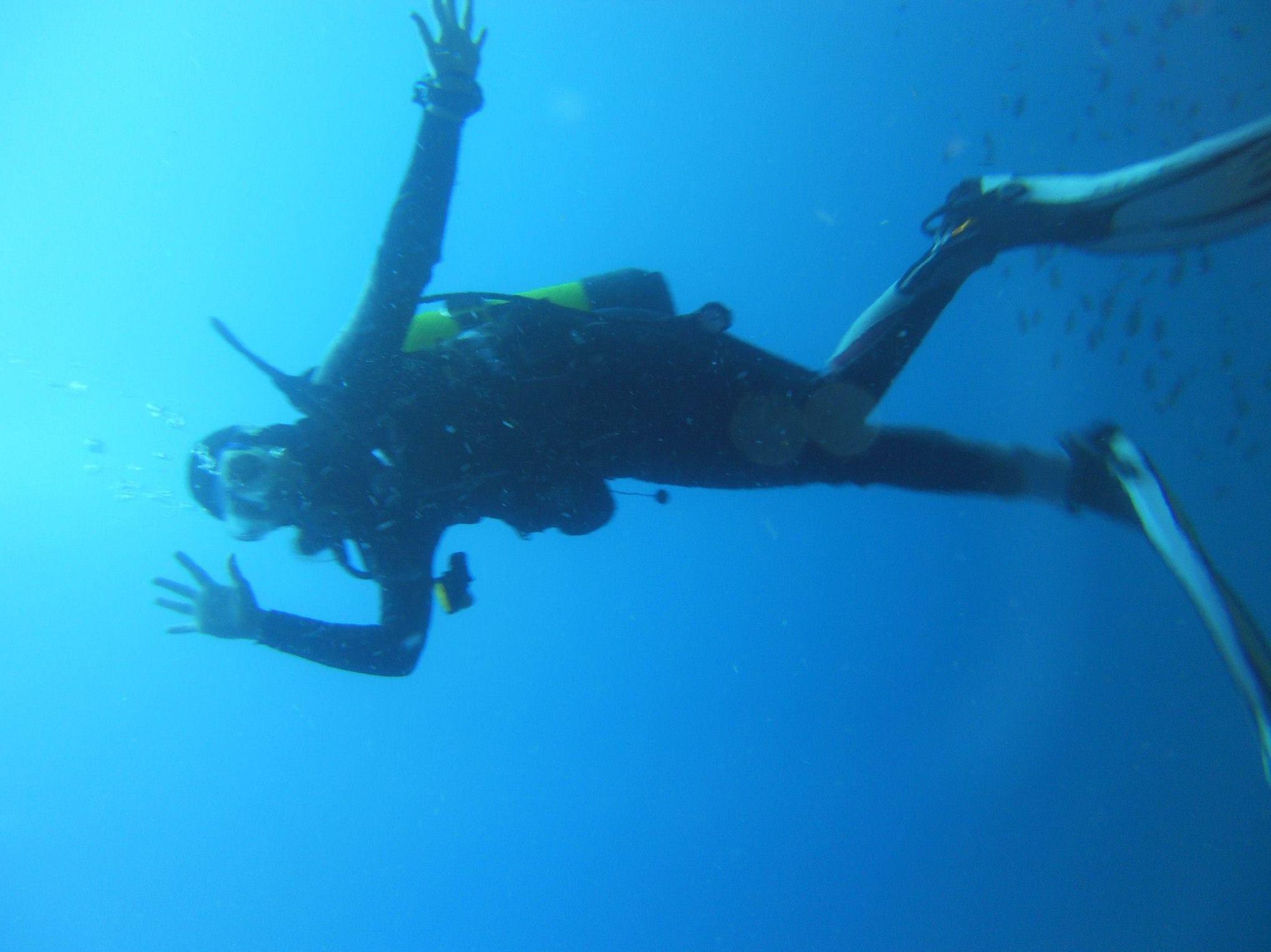 Submarinistas en el mundo marino